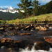 BetterPhoto Member Since: 12/15/2002