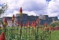 Beaumaris Castle - Wales