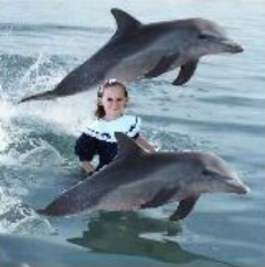 Claire and the dolphins