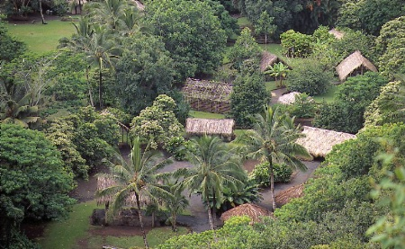 Hawaii Huts from Above