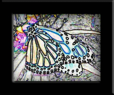 Digi~ Monarch