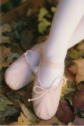Pink Feet in Leaves