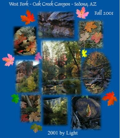 Fall Collage - Oak Creek Canyon - Sedona, AZ