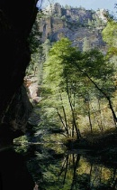 West Fork of Oak Creek - Sedona, AZ
