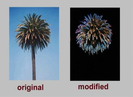 Nature's firework MK2