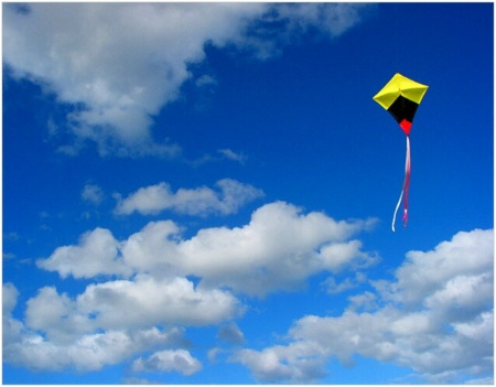 Kite-Flying with Bill