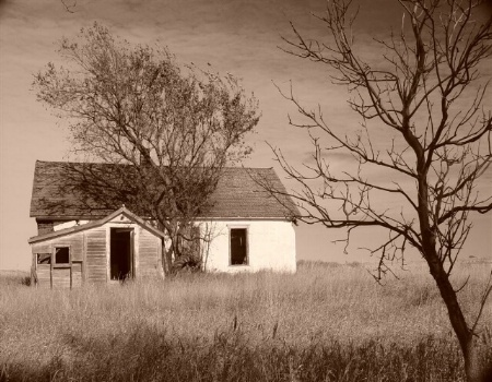 Abandoned Sod House