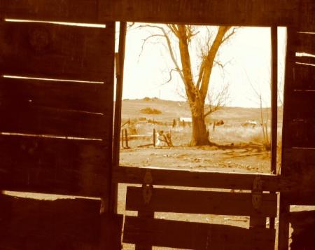 """Through The Window"""