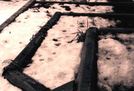 The wintergarden.