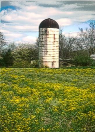 spring silo