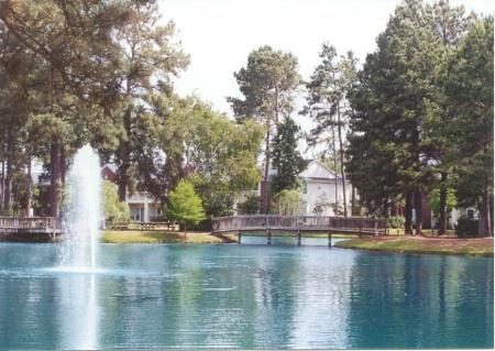 Water Fountain and Bridge