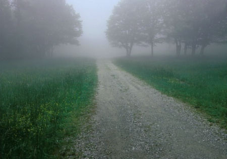 Foggy_road.tif