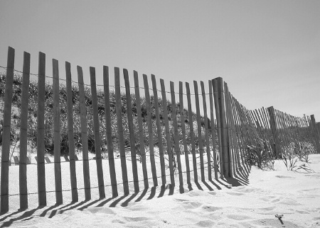 Fence on Cape Cod