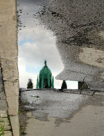 Puddle Reflection on U of T Campus