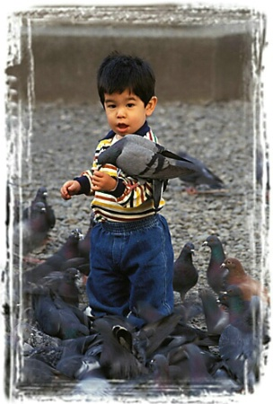 CJ Feeding the Pigeons