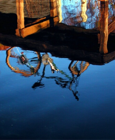 Reflections of a Bike