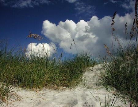 Dune's Path