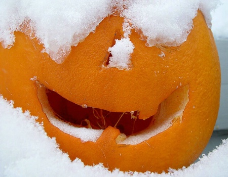 A Happy Snowy Halloween From Colorado