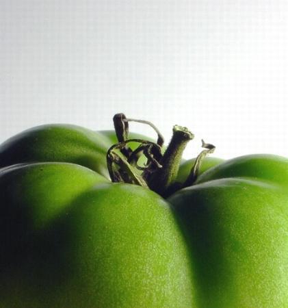 green 'mater