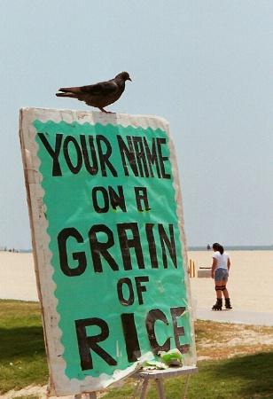 A Bird-Brained Idea?