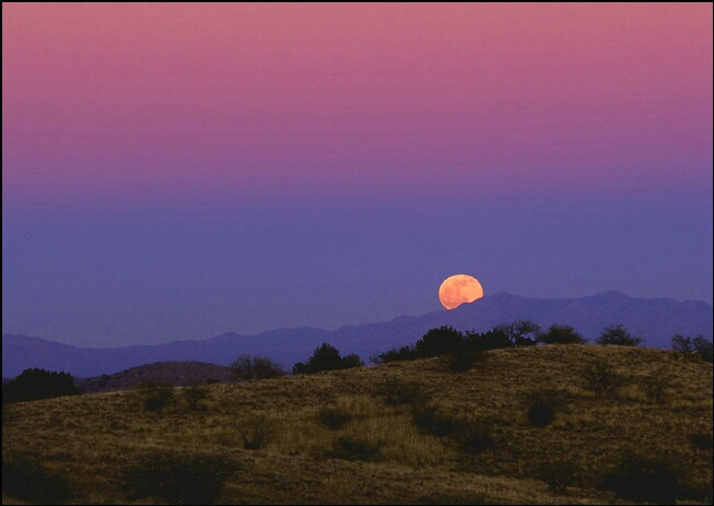 Moonrise Over the Santa Ritas