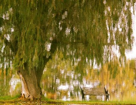 Monet's Inspiration