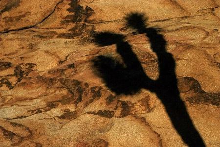 Shadow On Rock 2