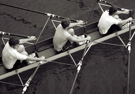 Rowers, Town Lake, Austin, Tx