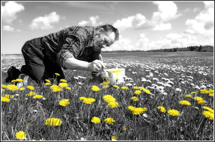 Dandelion painter