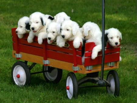 A Full Load