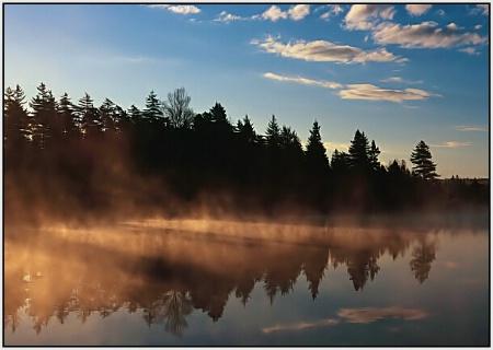 Golden Mist