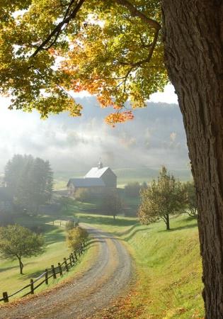 Gray Farm