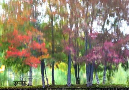 Wrinkles Autumn and Rain