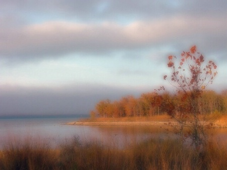 Dreamy Fall Cove