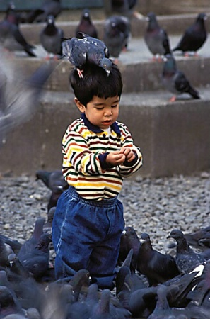 Chris Feeding Pigeons
