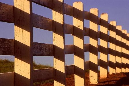 Fence & Shadows 2