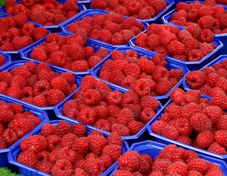 Raspberries in Bergen