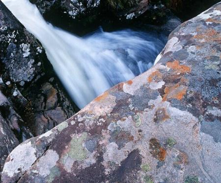 Lichen & Waterfall
