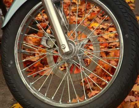 Wheels of fall...