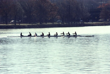 Rowing 5