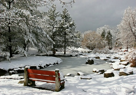 Winter Pond