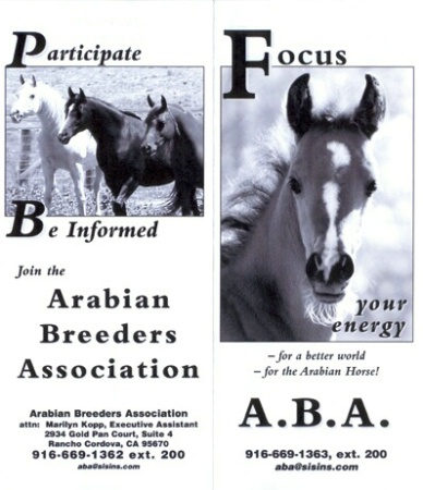 Arabian Breeders
