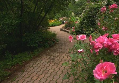 Garden Path - Leading Line
