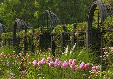 Formal Garden - Rhythm