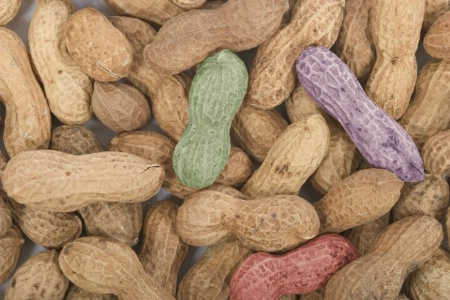 Peanuts Colorized