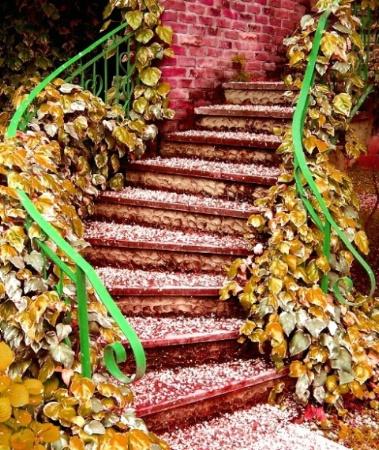 sapanca stairway