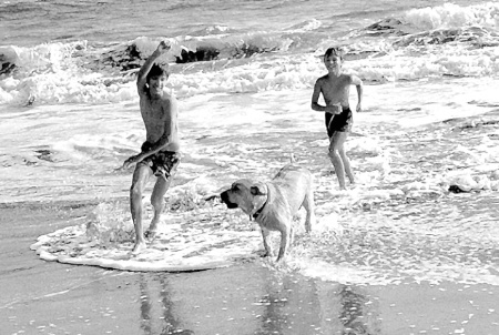 Joy In The Surf