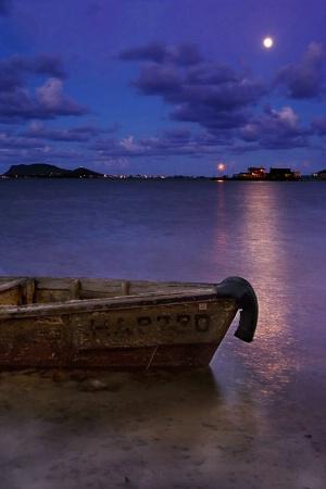 Night On the Bay