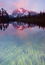 Mt Shuksan - Back from the Dead