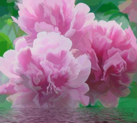 Floating Pink